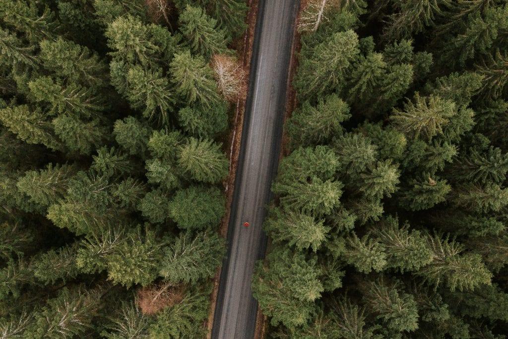 Anssi Lepikko kuvaamassa suomalaista metsämaisemaa yläilmoista DJI Mavic Pro -dronella.