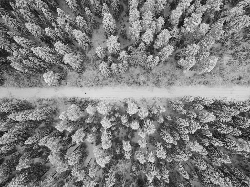Anssi Lepikko kuvaa DJI Mavic pro -kuvauskopterilla lumista metsämaisemaa Muuramessa.