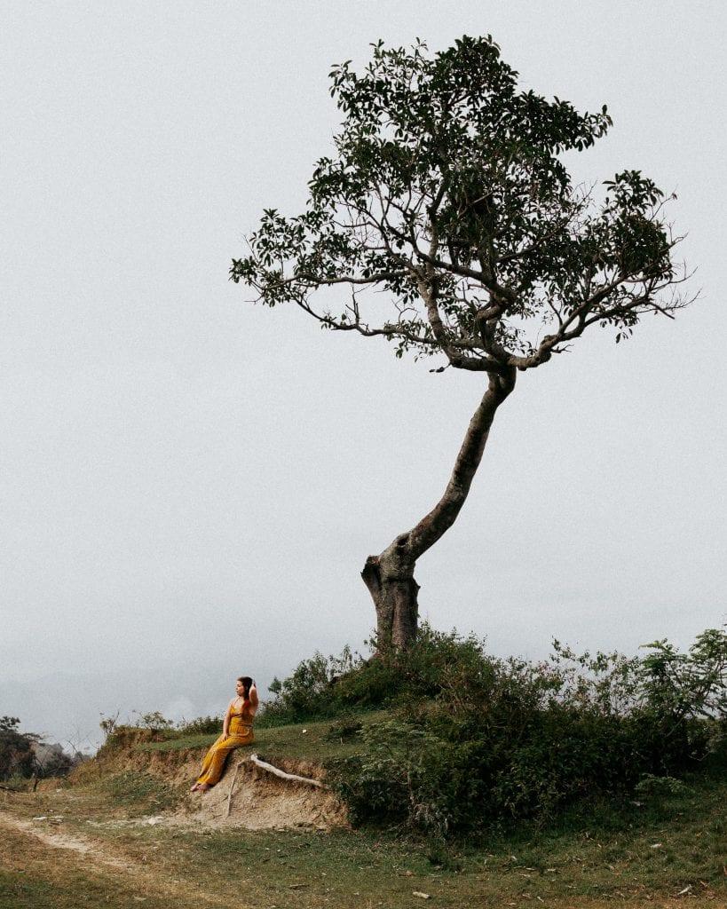Mallikuvausta vuoren huipulla, jossa pönötti yksinäinen puu. Kuva: Anssi Lepikko.