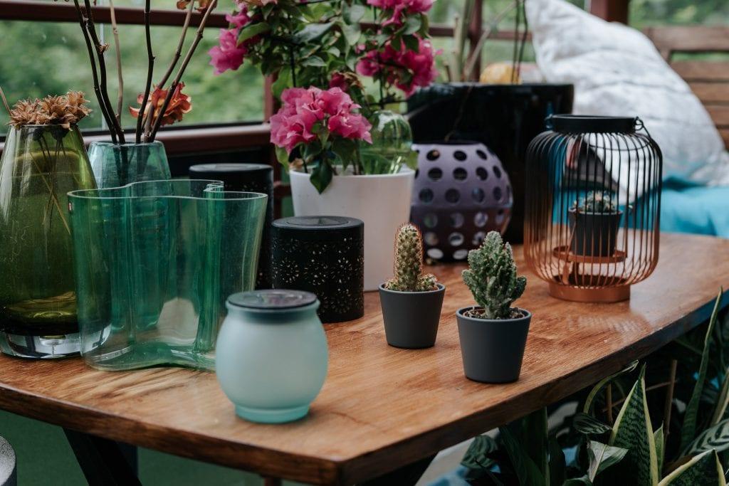 Erilaisia kasveja ja ruukkuja pöydällä.