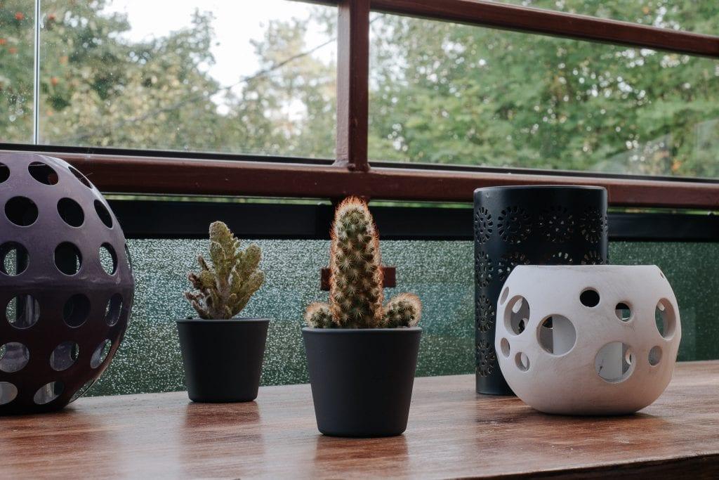 Lyhtyjä ja kaktuksia pöydällä.