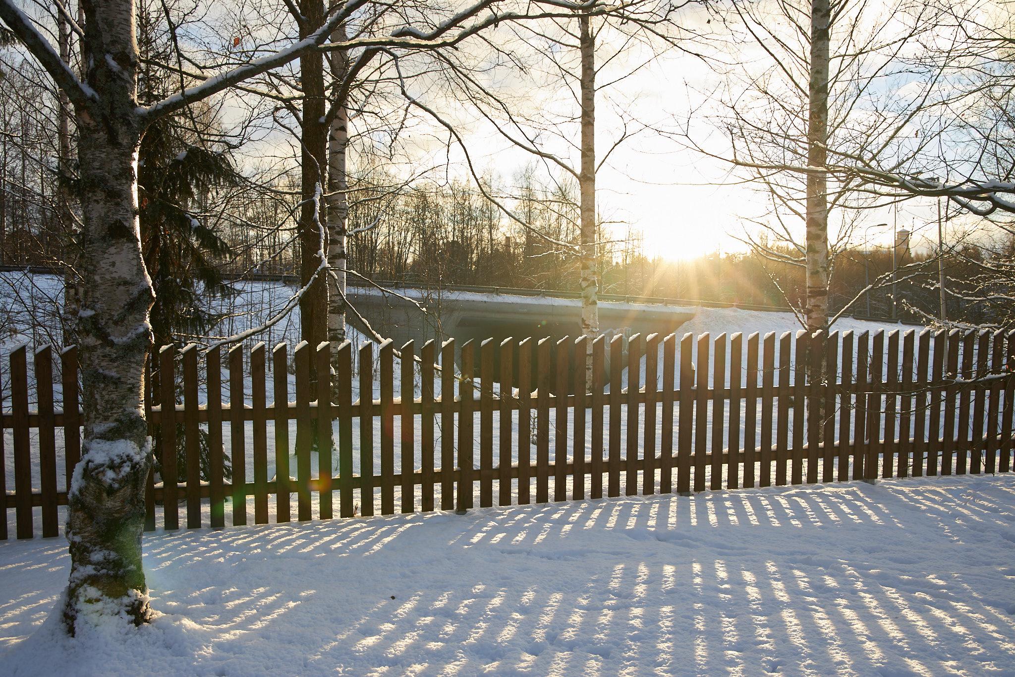 Iltapäivän aurinko talvella.